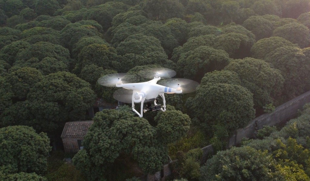 phantom 2 above forest